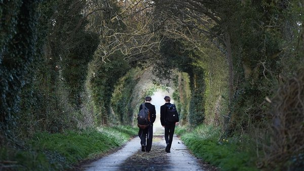 Brothers Cal and Sean McQuillan make their way to the school bus stop in Templepatrick