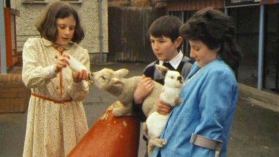 Cathy Toolin from Raheny, Áine Green from Drogheda, and William Devoy from Tallaght at the Pet's Corner in Dublin Zoo (1986)