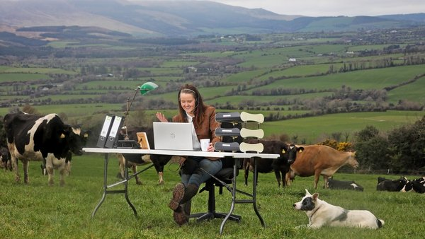 Dairy entrepreneur, Maighre?ad Barron, on her County Waterford farm launching ifac's annual Farm Report
