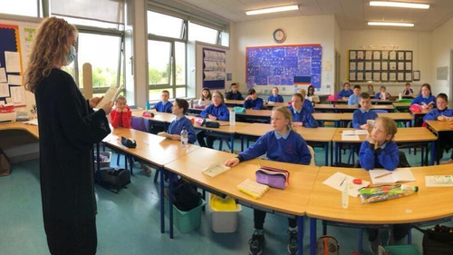 Pupils at St Killian's National School got started on the project last September