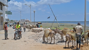 Motorbike taxis are clogging ancient narrow lanes on Lamu and threatening the Kenyan island's coveted World Heritage status