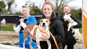 Vet Nurse Mandy Byrne, Vet Elise O'Byrne-White and Canine Carestaff Shane Lawlor.