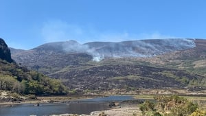 The outbreak burned through hundreds of hectares of Killarney National Park
