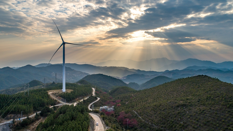 AXA says it will spend €4 million investing in carbon offsets using wind, hydro and solar projects