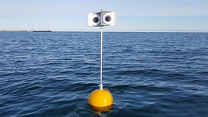 The trial found the number of birds were reduced by up to 30% within 50 metres of the scarecrow, compared to traditional fishing buoys
