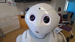 Researchers have named the robot Droid Audio Visual Educator - or Dave for short