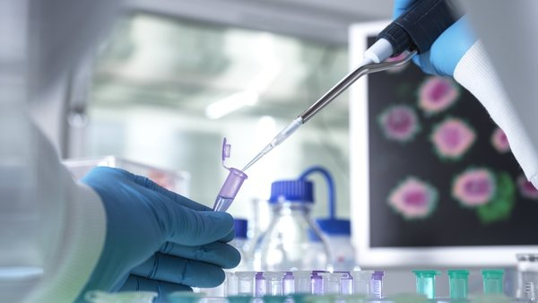 The infection was laboratory confirmed and the woman did not need hospitalisation