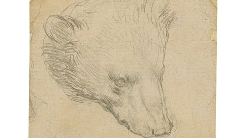 The picture, titled Head Of A Bear, is being sold in London by Christie's auction house