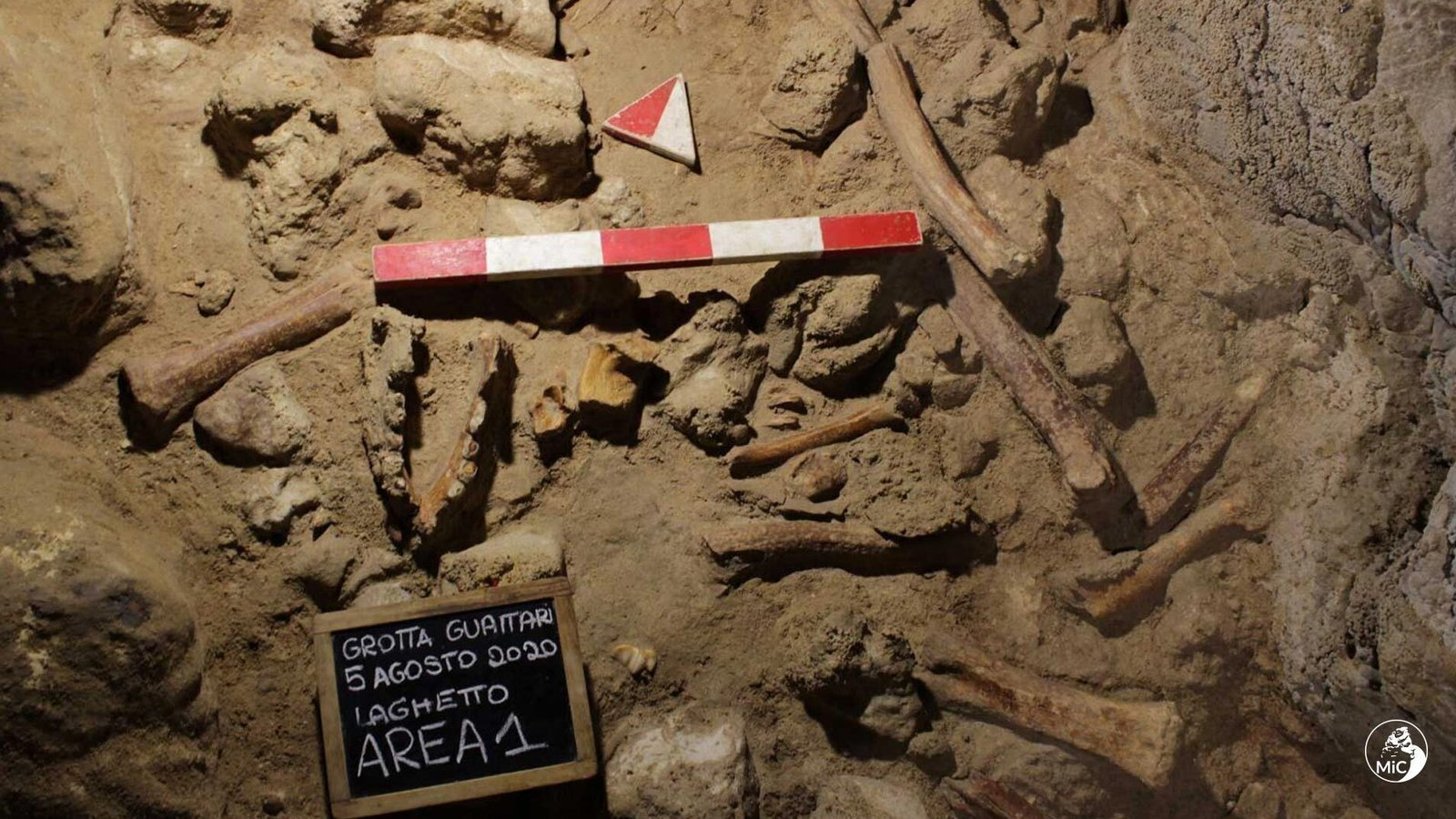 Remains of nine Neanderthal men found in Italian cave