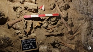 Neanderthal bones found in the Guattari Cave in San Felice Circeo Italy (pic: Italian Ministry of Culture)