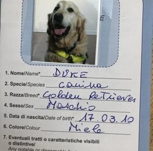 How Duke the Dog Became an Italian Citizen, by Tom Clonan