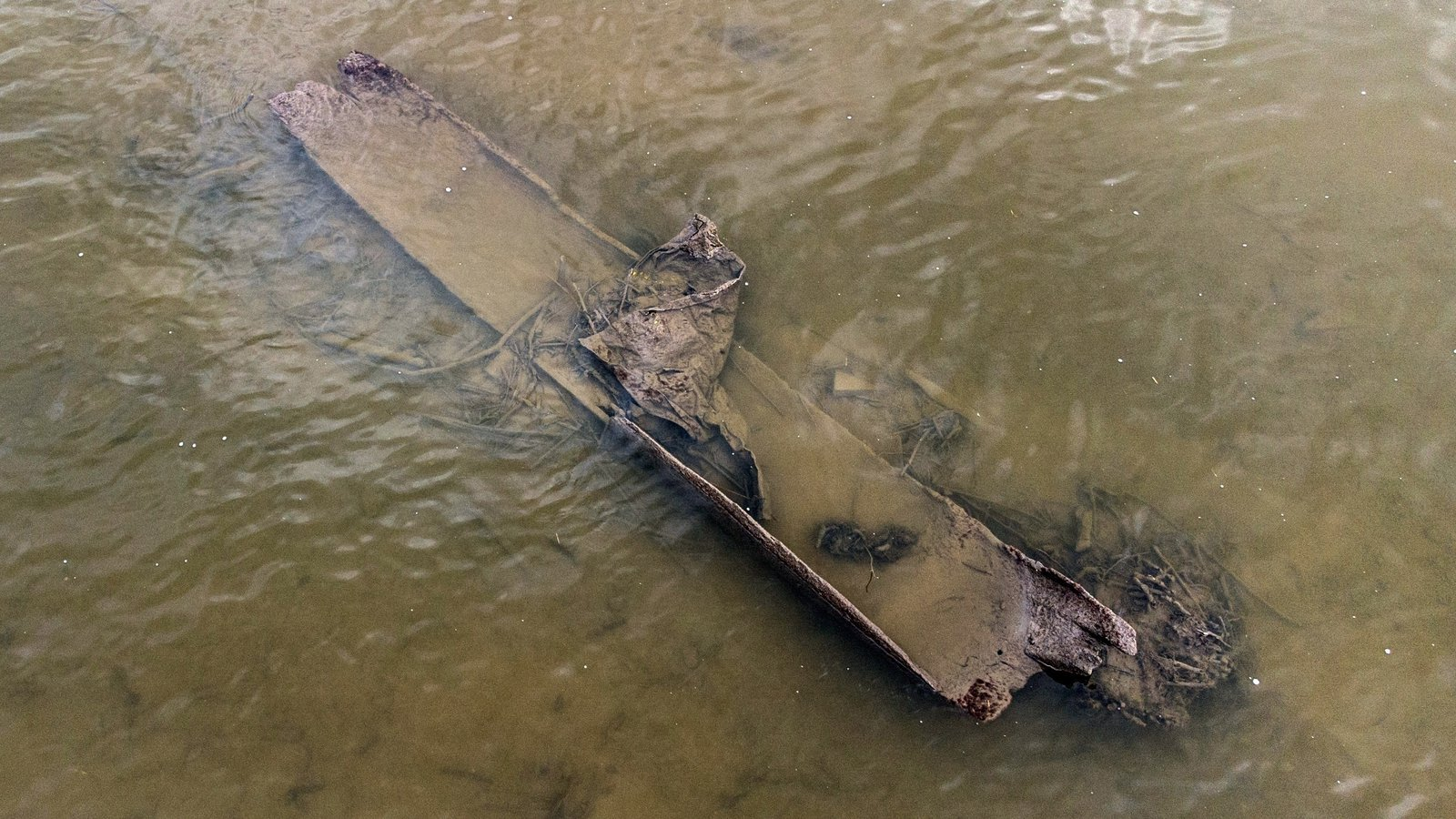 Two medieval-age logboats discovered in River Boyne