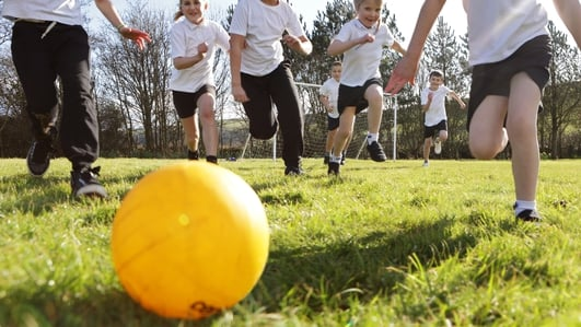 Up to €40m available for summer programmes for schools
