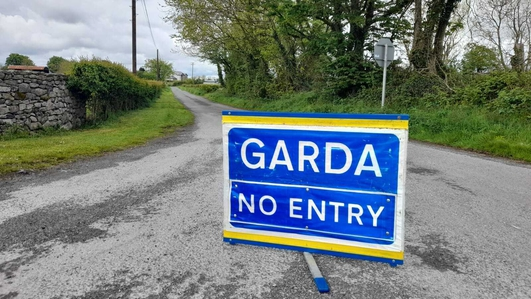 Two die in house fire in Co Roscommon
