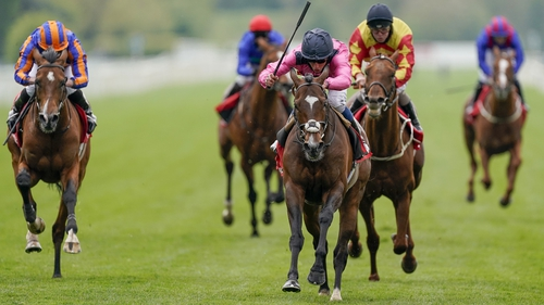 Spanish Mission will now for the Ascot Gold Cup