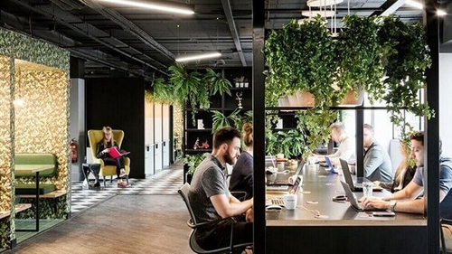 Even after a short exposure, there's a causal relationship between open-plan office noise and both stress and negative mood.