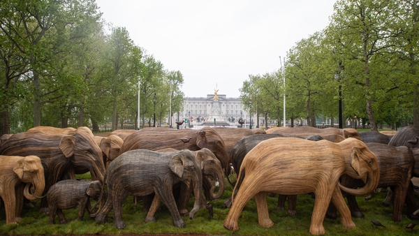 The 100 Asian elephants were created by communities in the southern Indian state of Tamil Nadu