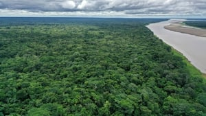 A third of key biodiversity areas globally lack any form of protection or conservation coverage