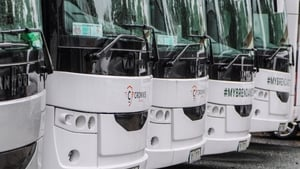 A new report recommends that the Government renews the Coach Tourism Business Continuity Scheme in Budget 2022