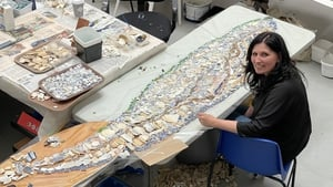 The whale mosaic has been created from thousands of shards of pottery washed ashore in Rosslare
