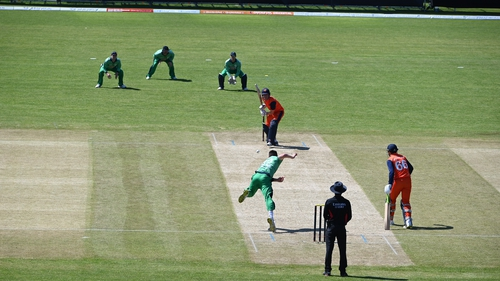Josh Little bowling against the Netherlands