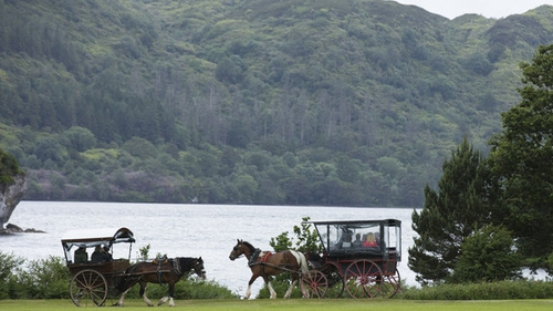 Jaunting cars are back in business at Killarney National Park (Pic: RollingNews.ie)