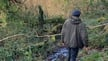 Eoghan Daltun's Forest | Culture File
