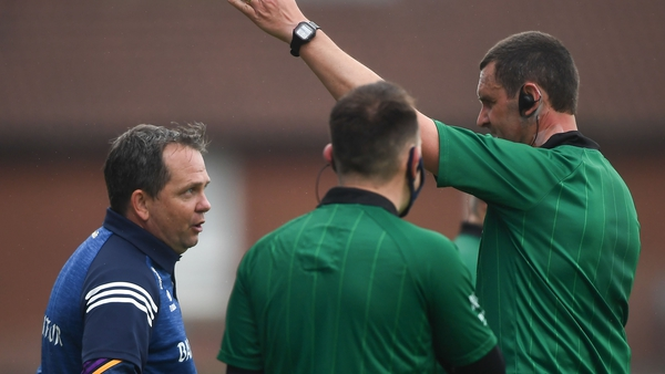 Wexford manager Davy Fitzgerald being sent off against Antrim