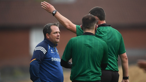 Wexford manager Davy Fitzgerald is sent to the stand by Carlow referee Patrick Murphy