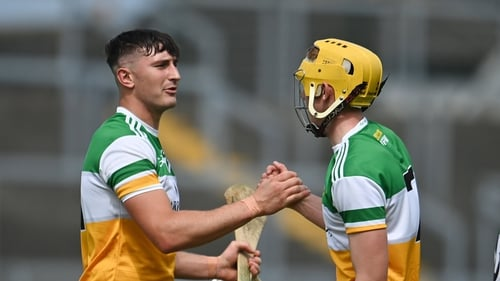 Offaly can look forward to Division 1 next year