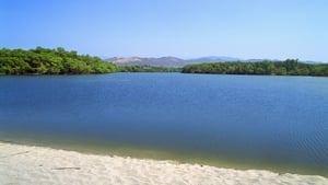 The women were swimming in Maniatelpec Lagoon when they were attacked