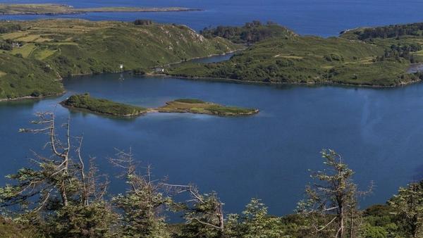 Lough Hyne Marine Nature Reserve in west Cork. Photo: Valerio Micaroni
