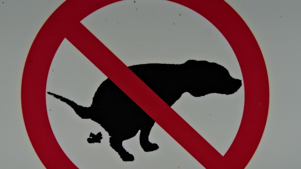 Galway City Council said no fines were issued in the last two years to dog owners over fouling