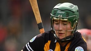 Denise Gaule impressed for Kilkenny yesterday
