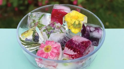 Expert Tanya Anderson offers a guide on how to freeze your favourite cut flowers into ice cubes, to add a garden twist to summer drinks.