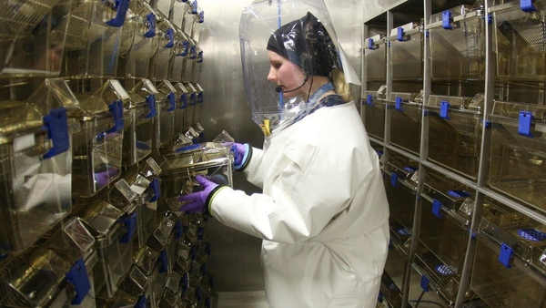 A virologist in the biosafety level 4 lab at the Bernhard Nocht Institute for Tropical Medicine in Hamburg, Germany. Photo: DPA Picture Alliance/Alamy Stock Photo