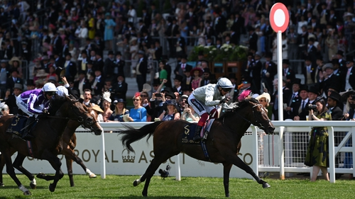 Palace Pier is the highest-rated horse in training in Britain, with an official rating of 125