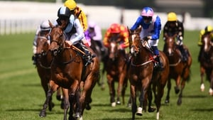 Quick Suzy relished the drop to five furlongs