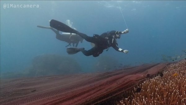 The fishing net covering the coral reef off the island of Koh Losin, Thailand. Courtesy: @imancamera