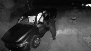 The footage shows the four-legged suspect standing upright on two legs to open the car door, before crawling inside (Image: Kenneth Miller/ Thornton PD)