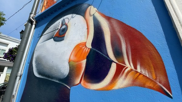 Organisers say the collection of street art pieces in Dún Laoghaire forms an open-air gallery in the town