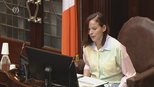 Eileen Flynn was appointed a temporary chair of the upper house a number of weeks ago