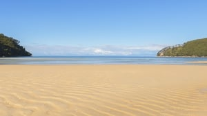 Temperatures are 'alarming', warn scientists (file image of Bark Bay in Nelson, New Zealand)