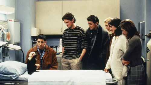 A scene with Marcel in Friends episode The One with Two Parts: Part 1 in 1995. Photo by NBCU Photo Bank/NBCUniversal via Getty Images via Getty Images