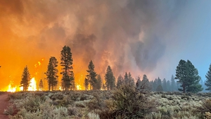 The Bootleg Fire in Oregon has already devoured more than 212,758 acres, the equivalent of 120,000 football pitches