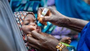 A child receives a polio vaccine in Nigeria