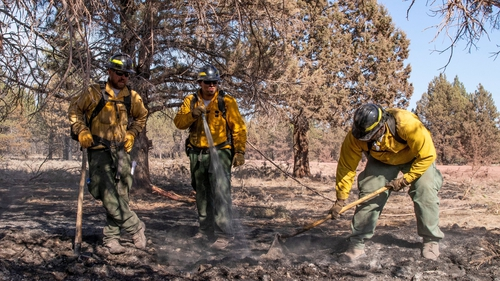 Oregon firefighters Taryn Thomas, Kenny Picard and Gamari Griffin work on a hotspot on the fire perimeter of the Bootleg Fire