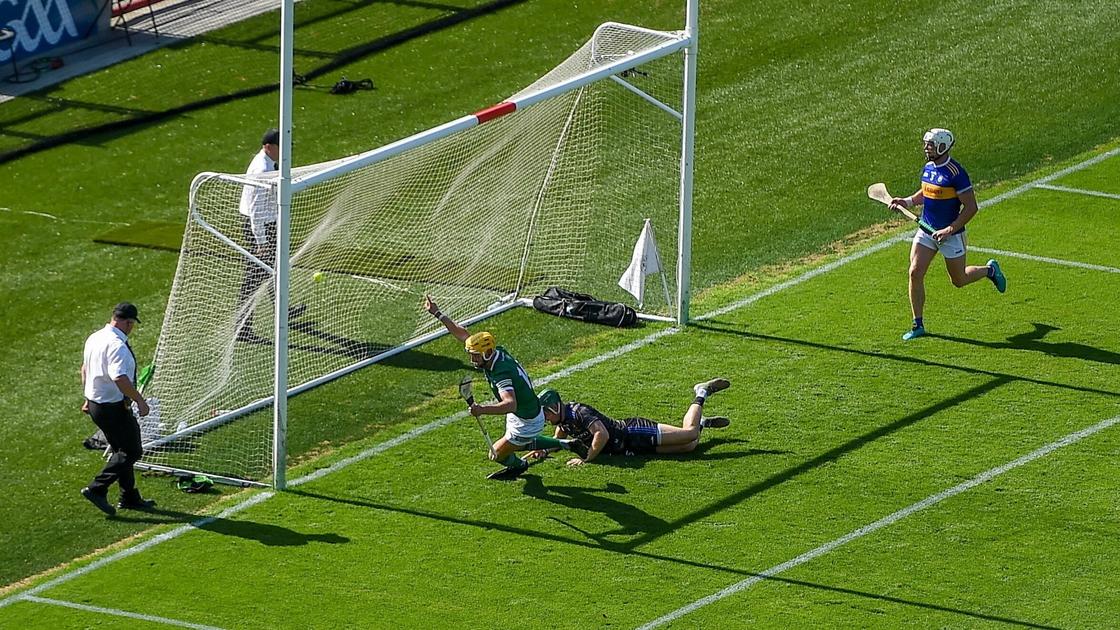 Image - Seamus Flanagan's goal set the Limerick fightback in motion
