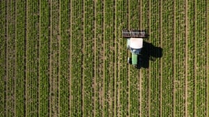 """""""Soils can vary drastically from one another, even to those that are right beside each other, as the correct fertiliser application for one field might not be right for its neighbour."""" Photo: Getty Images"""