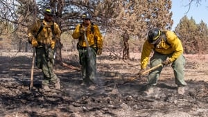 Firefighters dampen out fires near residential areas